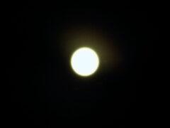 Суперлуну можно будет наблюдать еще несколько ночей