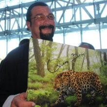 Стивен Сигал дал имя дальневосточному леопарду