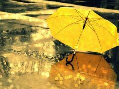 Сахалин и Курилы накроет мощный циклон