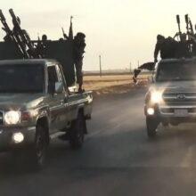 США заинтересовались числом автомобилей «Тойота» у террористов «Исиды»
