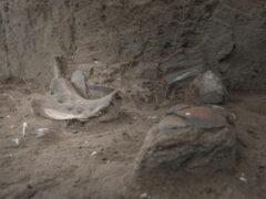 Археологи нашли в Южной Америке древнейшую керамику