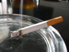 В Бресте пограничники нашли контрабандные сигареты в цистерне с воском