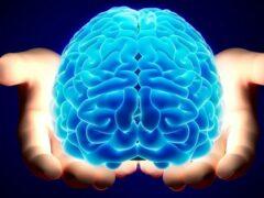 Найден способ автоматической диагностики шизофрении
