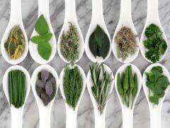 В США китайские лекарственные травы будут выращивать фермеры