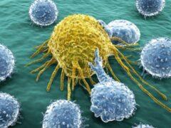 Ученые: Новая система доставки РНК поможет победить рак крови