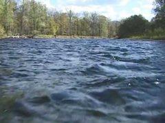 В Иванове женщина переплыла реку, спасаясь от агрессивного мужчины