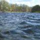 Ученые: Открыт новый метод очистки воды