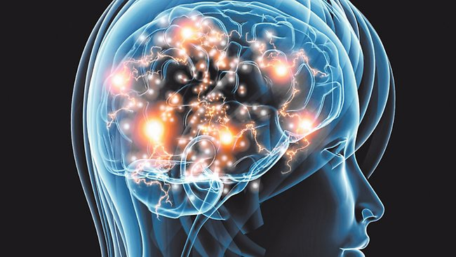 мозг связи