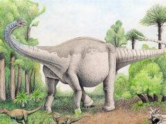 Ученые: Динозавры умели маскироваться, подобно хамелеонам