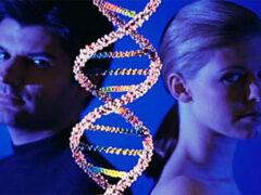 Ученые назвали дату исчезновения всех мужчин с лица Земли