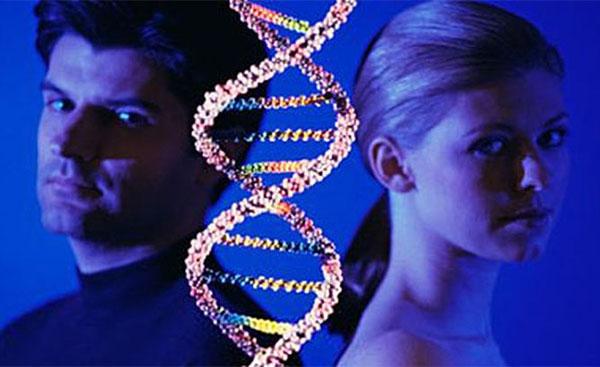 ДНК, хромосомы, мужчины, женщины