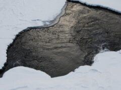 В Свободном автомобиль «Тойота» провалился под лед