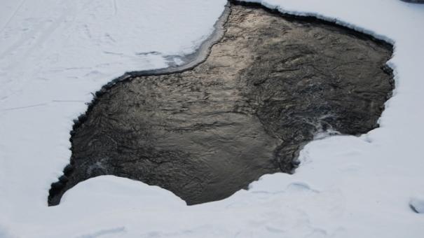 полынья лед