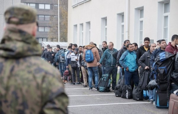 прием беженцев