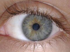 Ученые уверяют, что по глазам человека можно прочитать его мысли