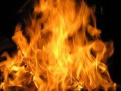 В Петербурге на Суздальском проспекте горел автобус «ПАЗ»