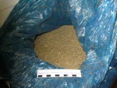 Почти 100 килограммов марихуаны изъято в Приморье в первые дни года