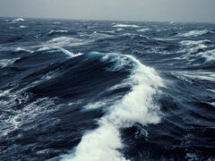 Древние океаны были намного холоднее, чем считали ранее — ученые