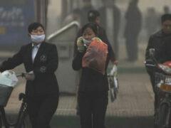 Учёные: грязный воздух «убивает» 5,5 млн человек в год