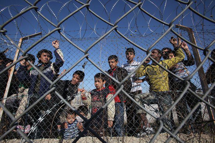 мигранты ЕС