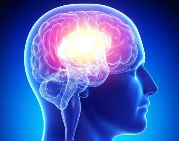 мозг исследование