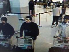 ДНК брюссельского смертника была найдена на месте теракта в Париже