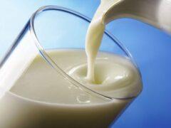 Ученые обнаружили связь между потреблением молока и онкологией