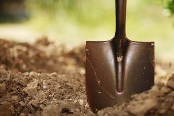 лопата земля