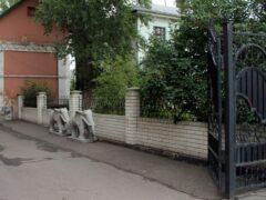 В парке культуры и отдыха Мичуринска появятся слоны