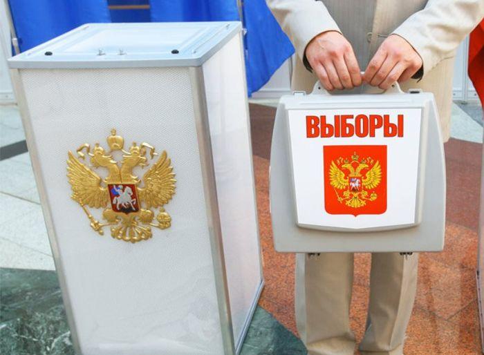 выборы в Петербурге