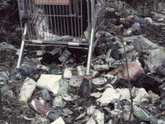 Труп женщины нашли на свалке в Левашово