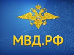 Сайт МВД России с 12 июня перейдет на кириллический домен