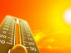 Жаркий климат делает людей агрессивными – ученые
