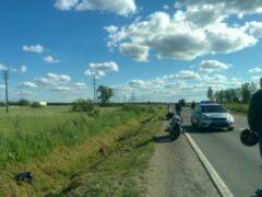 На Ропшинском шоссе лесовоз столкнул мотоциклистку в канаву