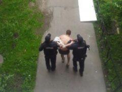 Неадекватный петербуржец выбросил собаку из окна на шестом этаже