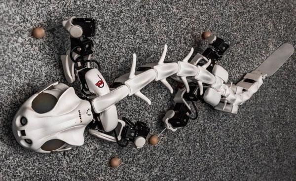 робот «Pleurobot»