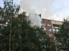 Петербург: из горящей квартиры на Ударников спасли человека и кота