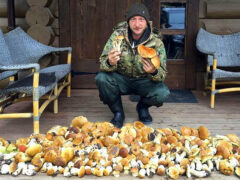 В Сети упрекнули Евгения Плющенко, насобиравшего огромную кучу грибов