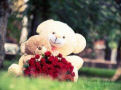 Житель Башкирии похитил цветы и игрушки, чтобы раздать их прохожим