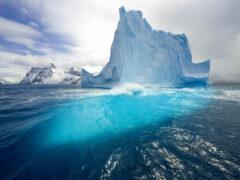 Площадь льда в Арктике достигла критического минимума