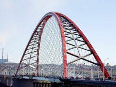 Спрыгнувшего с Бугринского моста новосибирца нашли на острове