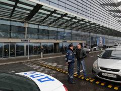Оскорблявший полицейского во «Внукове» водитель Mercedes задержан