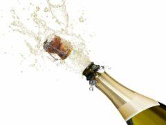 Житель Мичуринска похитил бутылку шампанского за 3600 рублей