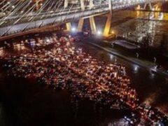 Петербургская автоелка из 400 машин стала самой большой в России