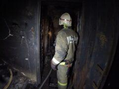 В Башкирии при пожаре погибли две девочки
