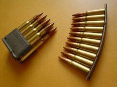 Петербуржец нашел в Веселом Поселке тысячу патронов и сдал их полиции
