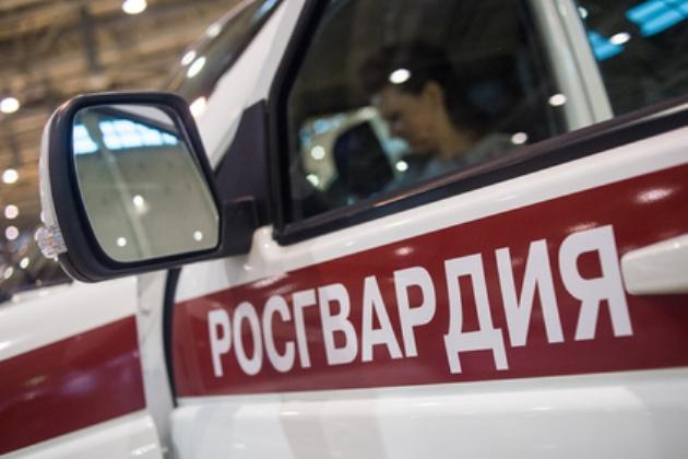 Работники Росгвардии были вынуждены стрелять вдебоширов вкафе под Ставрополем