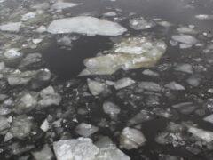 В Ростовской области 62-летний рыбак провалился под лед и утонул