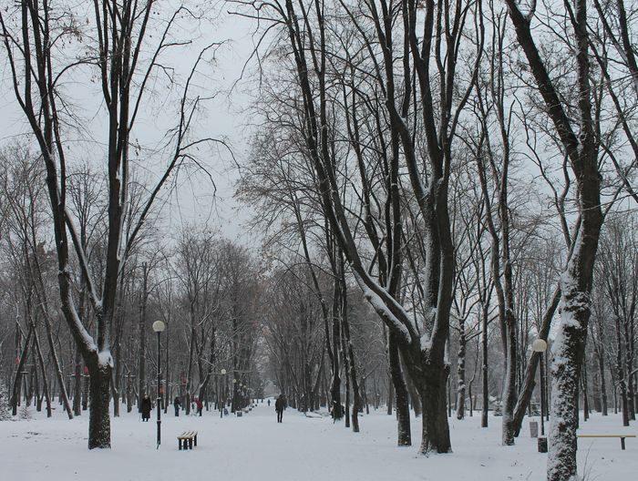 снег мороз