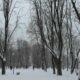 В Подмосковье при падении снега с крыши пострадали женщина и 6-летняя девочка